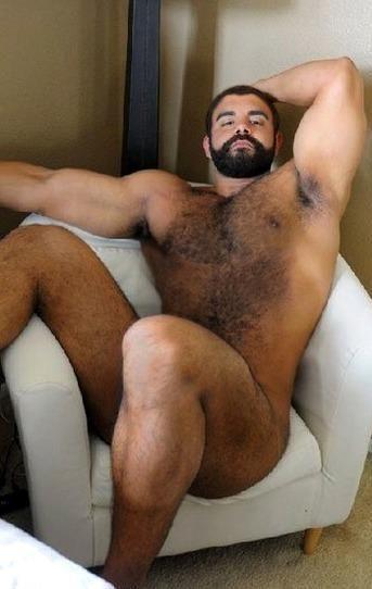 Nude hairy bears