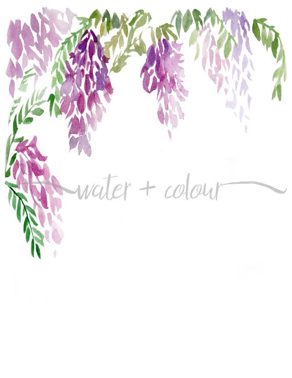 Downloadable wisteria watercolor border by WaternColour on Etsy