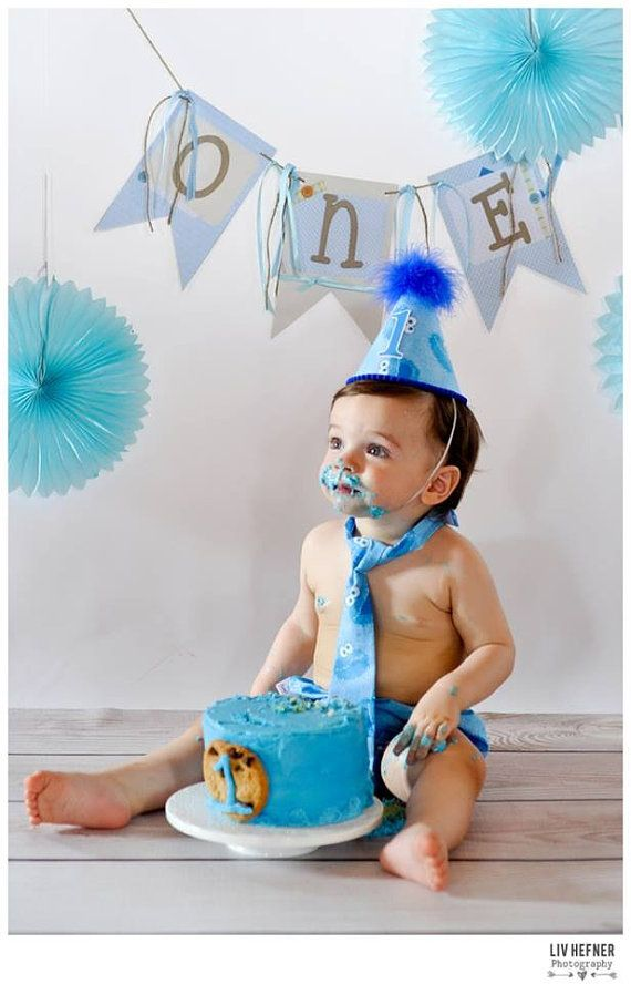 Baby Boy / Toddler Cake Smash Outfit Birthday Suit in Cookie Monster