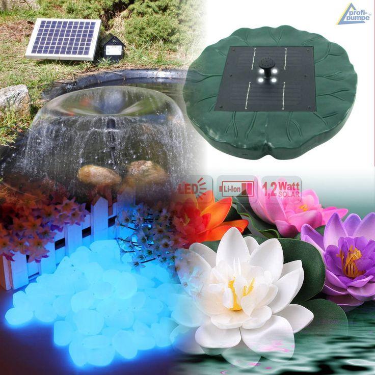 Qui trovi gli accessori laghetto tartarughe acquatiche quali: pompe solari, decorazioni, illuminazione e tanti accessori utili al tuo pond.
