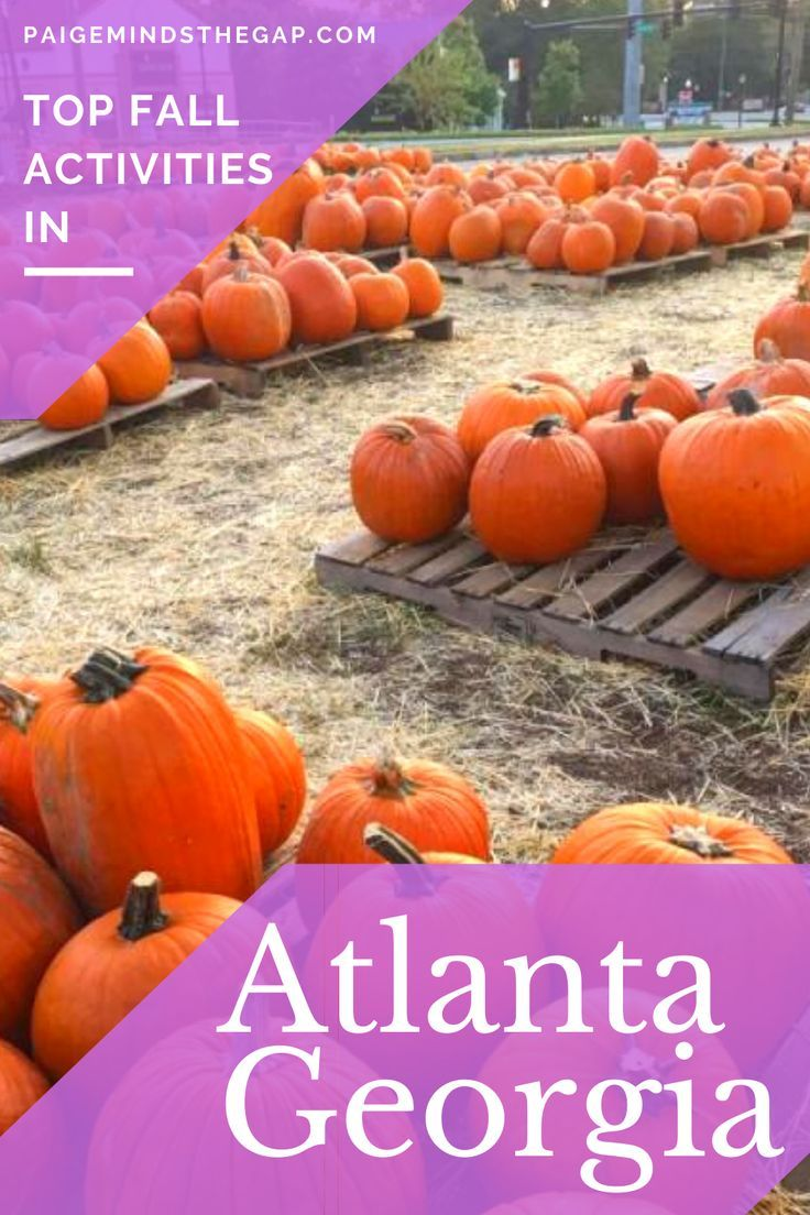 Top Things To Do During Fall In Atlanta Georgia Paige Minds The Gap In 2020 Traveling By Yourself Atlanta Travel Things To Do