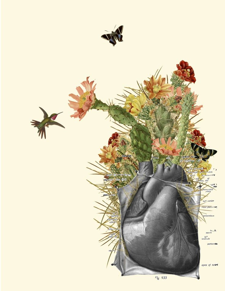 """thorns"" anatomical heart collage by bedelgeuse (bedelgeuse.tumblr.com)"