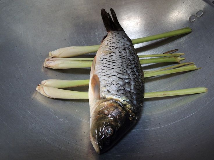 Salah satu ikan yang enak dibikin apa aja itu adalah Ikan Mas. Mau digoreng, dipepes atau dibakar, daging Ikan Mas yang empuk dan tebal itu berasa banget deh nikmatnya. Betul? Tapiiii, buat masyara...