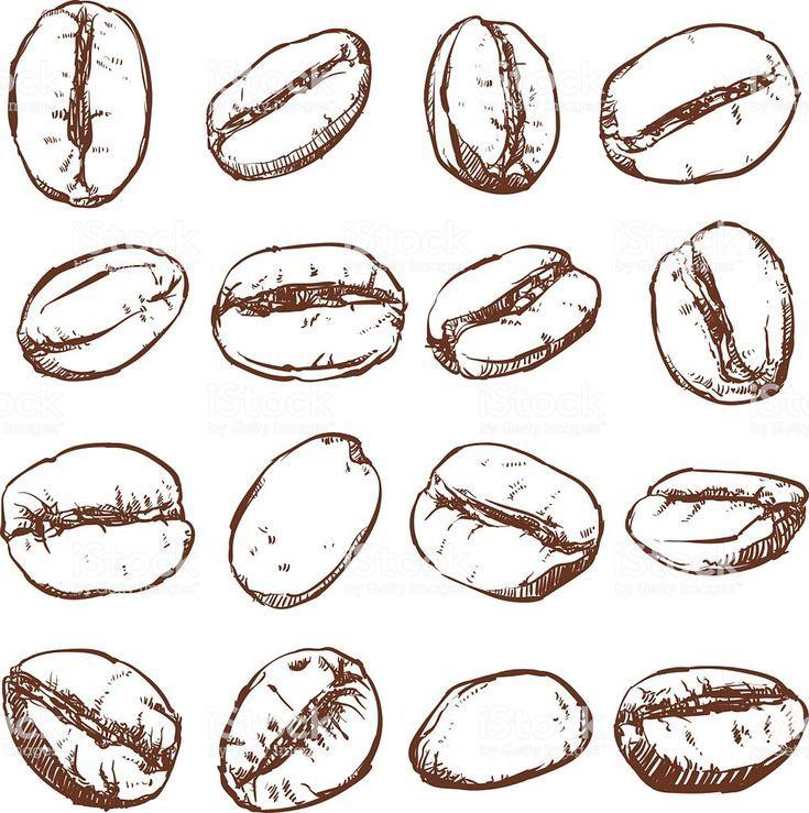 Картинки кофейные зерна нарисованные