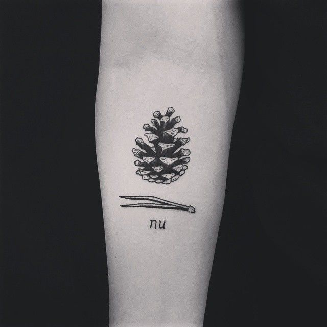 Pine-cone fun. :) come in an tell me your tattoo ideas. Bob/White Collective…