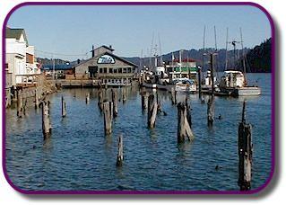 74 Best Oregon Coast Images On Pinterest Oregon Coast