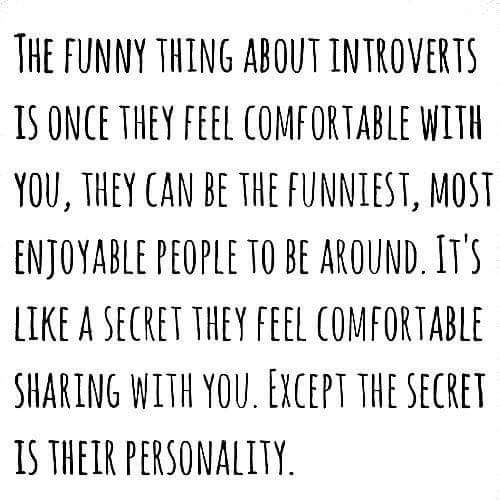 Cool quote about introverts like me