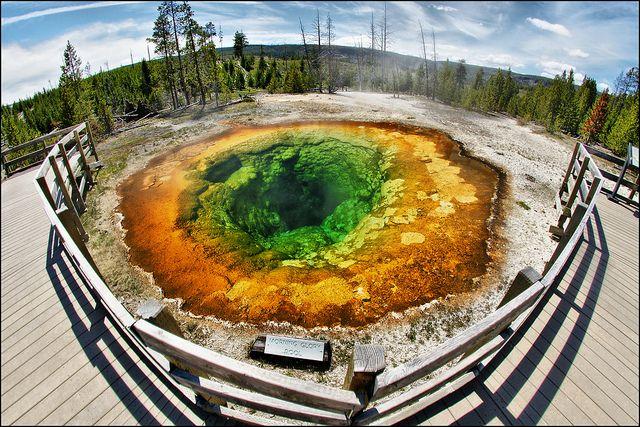 morning glory pool yellowstone: Morning Glories, Pools Yellowstone, Favorite Places, Rasta Colors, Hot Springs, Yellowstone Parks, Mornings Glories Pools, Photo, Yellowstone National Parks