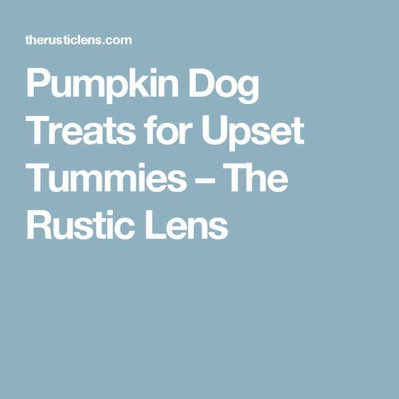 17 Best Ideas About Upset Tummy On Pinterest Heartburn