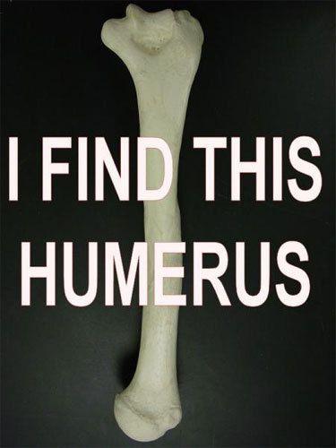 This is a funny bone.Nurs Humor, Schools Humor, Science Jokes, Nerd Jokes, Anatomy Humor, Funny, Science Humor, Tech Humor, Medical Humor