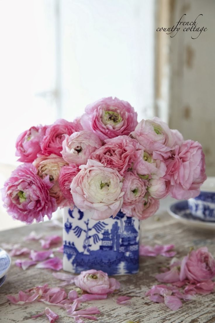 Blue & white Charm (FRENCH COUNTRY COTTAGE)