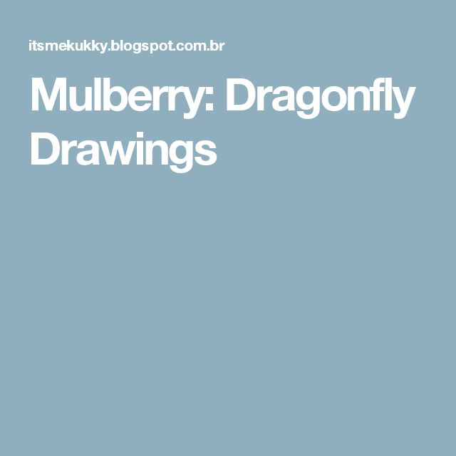 Mulberry: Dragonfly Drawings