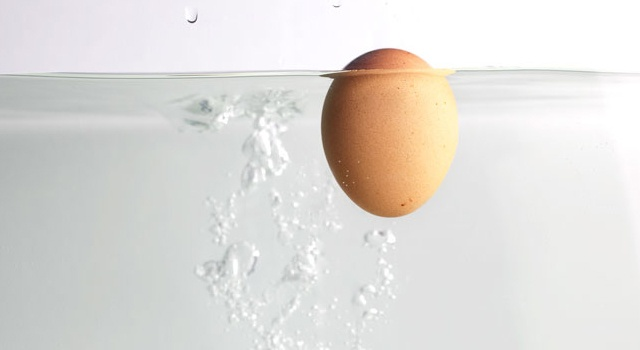 The fresh egg test - really cool!