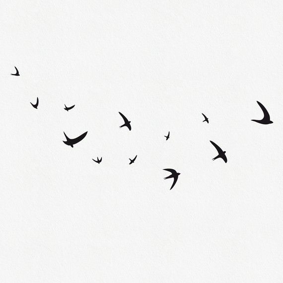 Vinyle oiseaux oiseaux noirs Bird Wall Decal Wall par MUSTERLADEN, €14.00