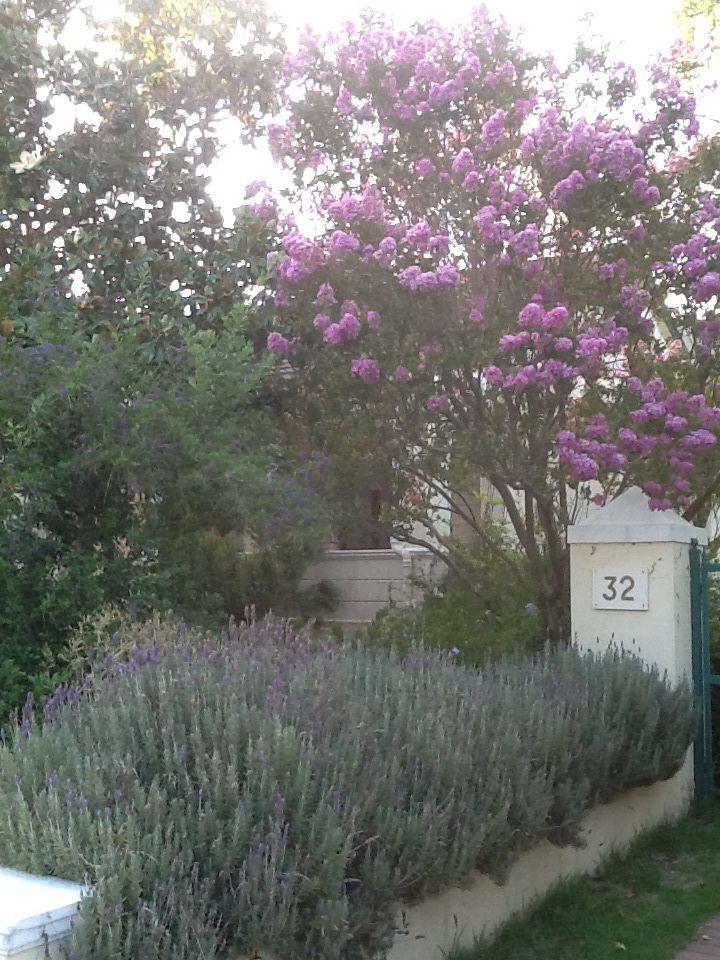 Barrydale garden