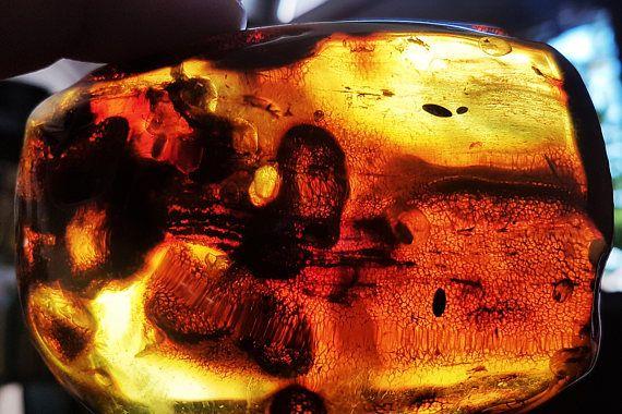 965g. Huge Natural Baltic Amber stone