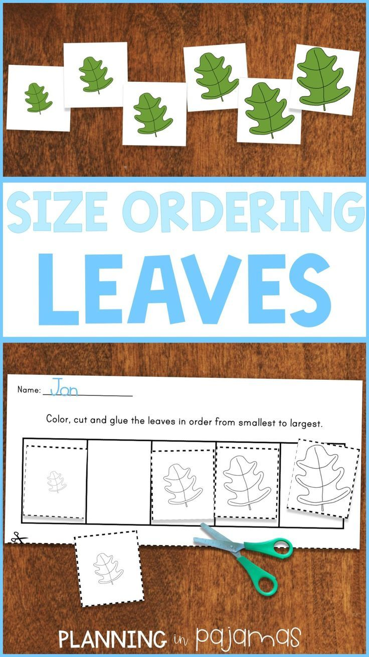 Size Ordering Activity To Include In A Fall Autumn Theme Includes 2 Worksheets And 2 Sets Of Preschool Fall Math Fall Lesson Plans Preschool Curriculum Themes [ 1308 x 736 Pixel ]
