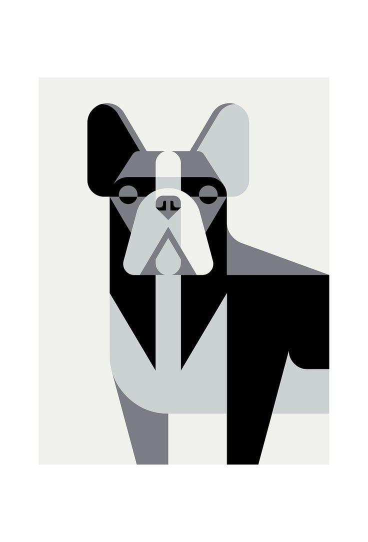 French Bulldog Portrait by Josh Brill