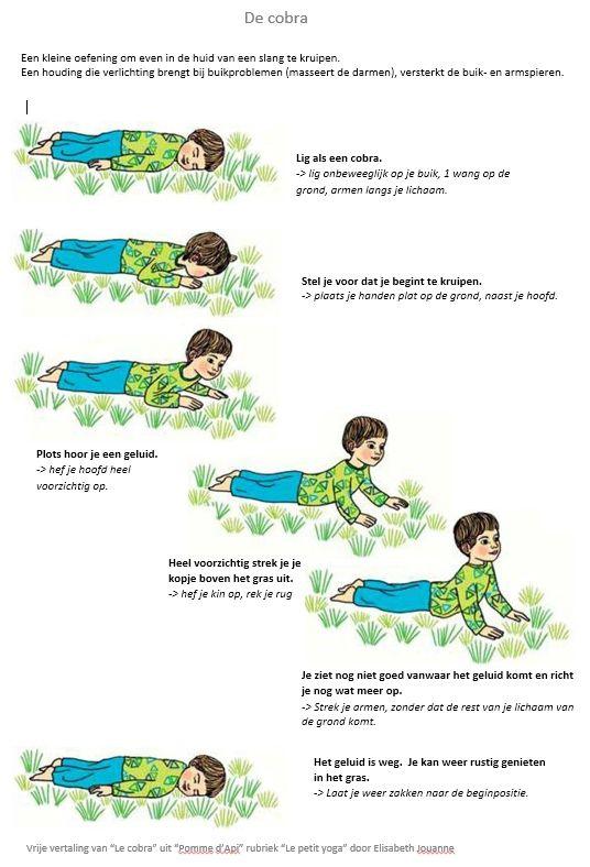 """Yoga-oef. : De cobra. Vrije vertaling door Els Saey. Bron : """"Le cobra"""" uit """"Pomme d'Api"""", rubriek """"Le petit yoga"""" door Elisabeth Jouanne."""