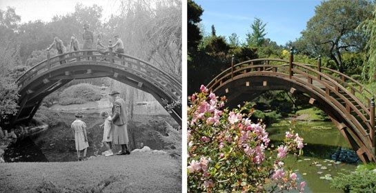 The Huntington Library's Japanese Garden Restoration : News, Culture + Travel : Architectural Digest
