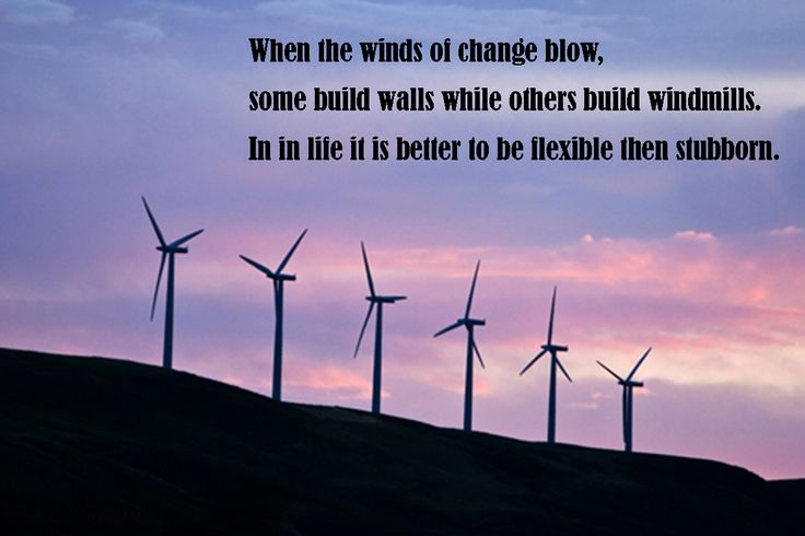 When the winds of change,  blow some build walls  while others build windmills. In in life it is better to be flexible then stubborn.