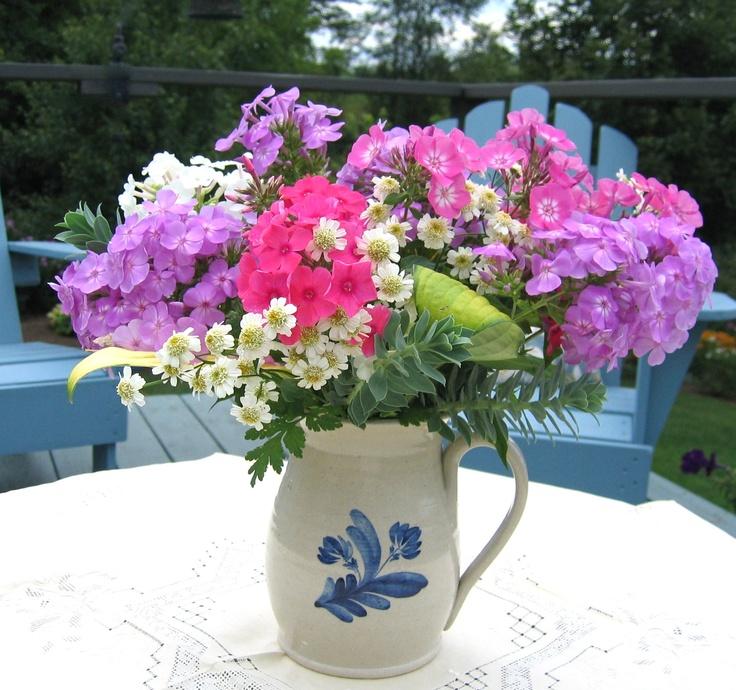30 Best Phlox Bouquet Images On Pinterest