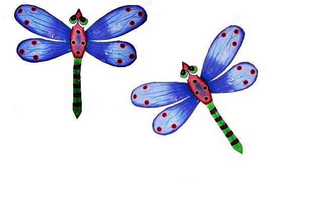 The Gecko Shack - Dragonfly Blue (Medium) Quick Combo set of 2, $60.00 (http://www.geckoshack.com.au/dragonfly-blue-medium-quick-combo-set-of-2/)