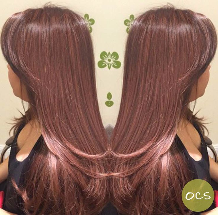 Gorgeous Rose Gold Hues On A Natural Level 2 Hair Color Who Says Brunettes A