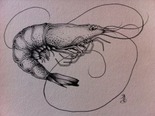 Shrimp by maggiegeobax on Etsy, $30.00