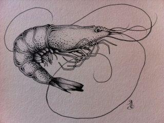 Shrimp by maggiegeobax on Etsy, $30.00