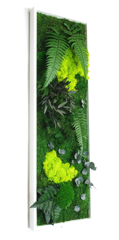 Tableau végétal stabilisé sans entretien Jäkälä 80 x 25 cm : Décorations murales par green-n-co