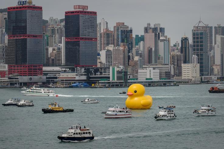 Hong Kong: un canard géant créé par un artiste néerlandais fait des vagues (littéralement)