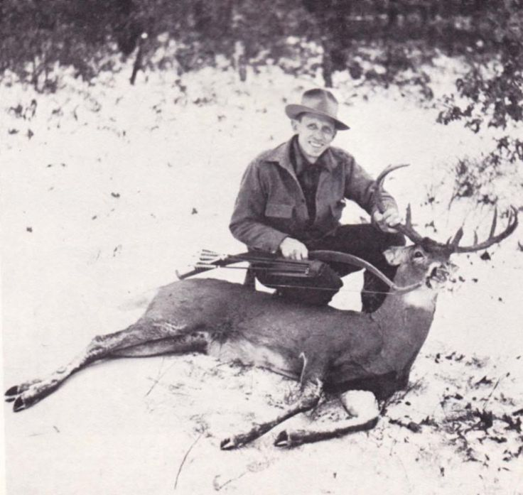 Cool Traditional Bowhunting/Archery Pictures - Traditional Archery - Mississippi Hunting and Fishing Forums