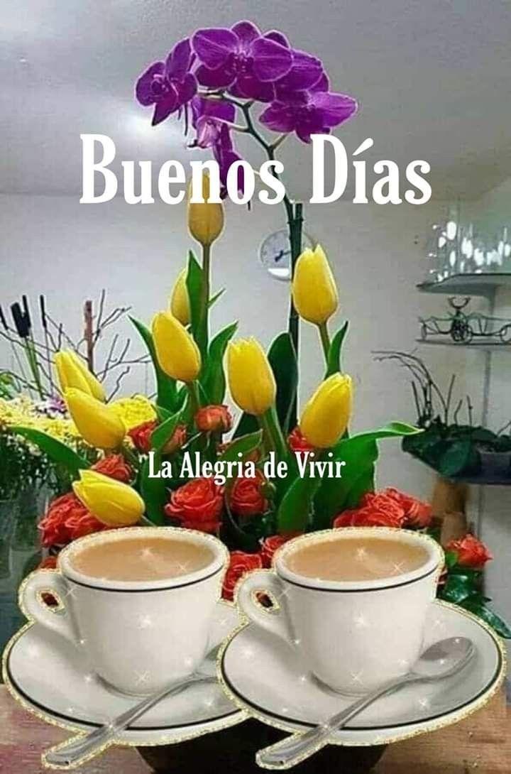 Imagenes Con Flores De Buenos Dias