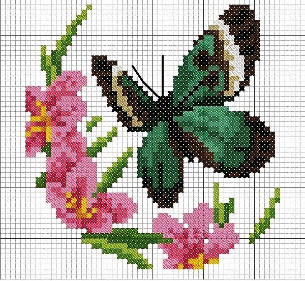 Oltre 1000 idee su fiori a punto croce su pinterest for Farfalle da ricamare