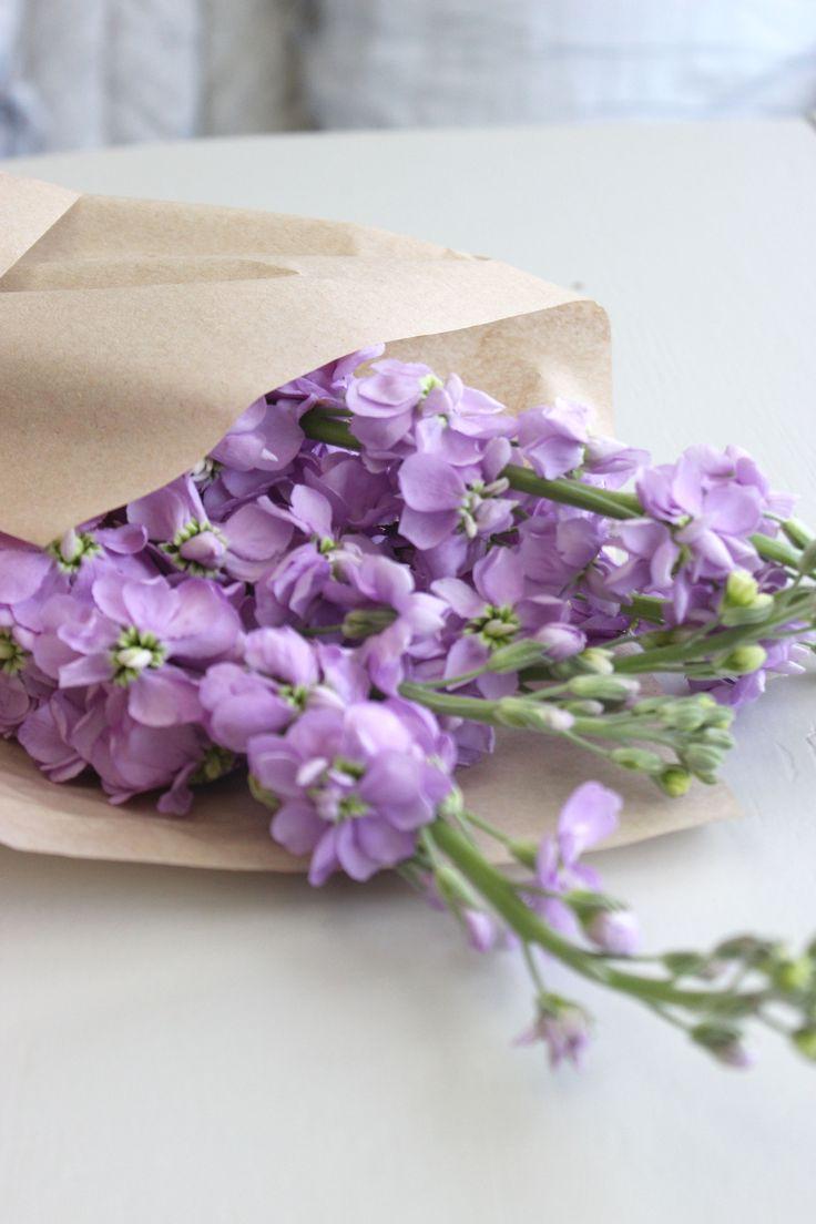 Lilac ettrottmonogram.blogspot.se