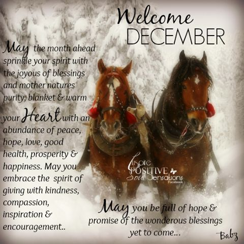 Image result for December blessings for my friends