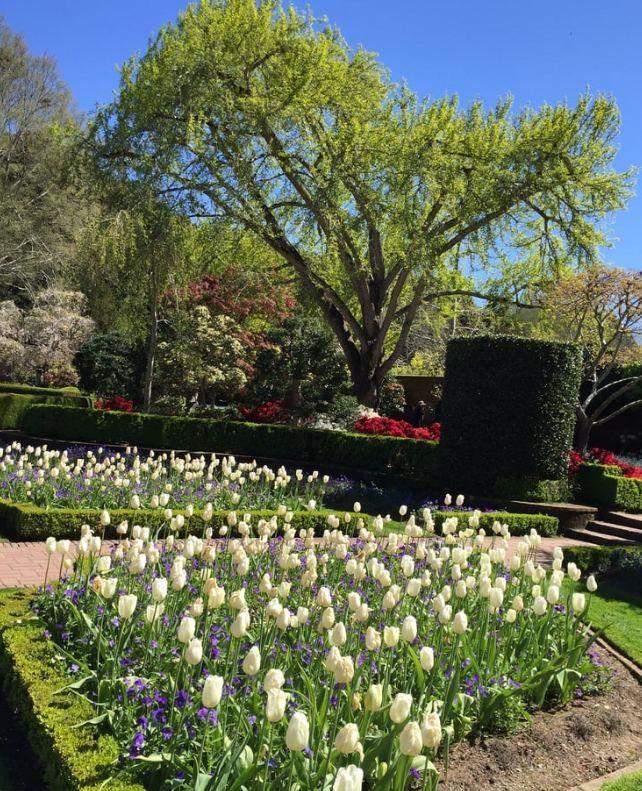 a1c63700e28a5aa0cc14d1bb38615c8f - Gardens Of The World Berlin Cost