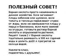 ПОЛЕЗНЫЙ СОВЕТ ДАЧНИКАМ.
