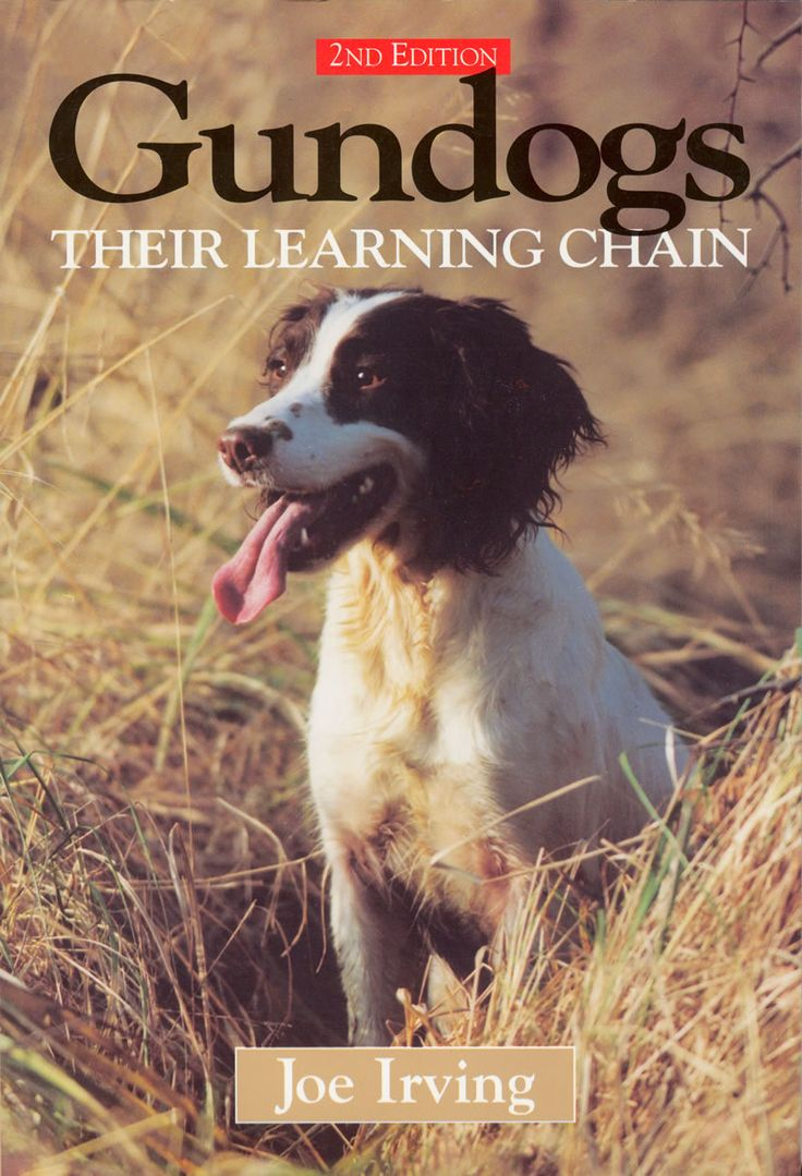 Gundogs: Their Learning Chain by Joe Irving | Quiller Publishing. A greatly respected handbook on gundogs showing how to train a dog for any type of shooting, by following a series of basic lessons which form a special sequence or 'learning chain'. From buying a puppy to working it in the field, Irving describes in detail how to adapt each stage of training to suit individual temperaments and all breeds of gundog. #dog #gundog #training #tips #lessons