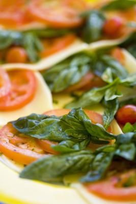 How to Store Basil Leaves for the Winter