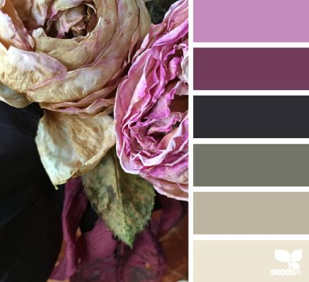 Faded rose colour pallet would complement our dark walnut furniture ranges - Shiro and Mayan.
