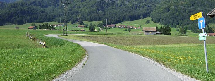 Fahrradtour Murnauer Moos und Staffelsee