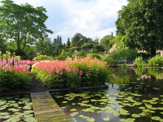 Botanische Tuinen Universiteit Utrecht