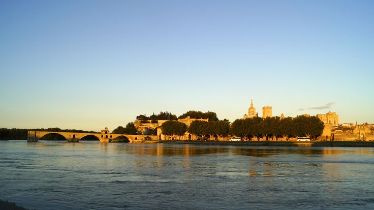 Looking across to the Pont d'Avignon and the Cathedrale Notre-Dame des Doms