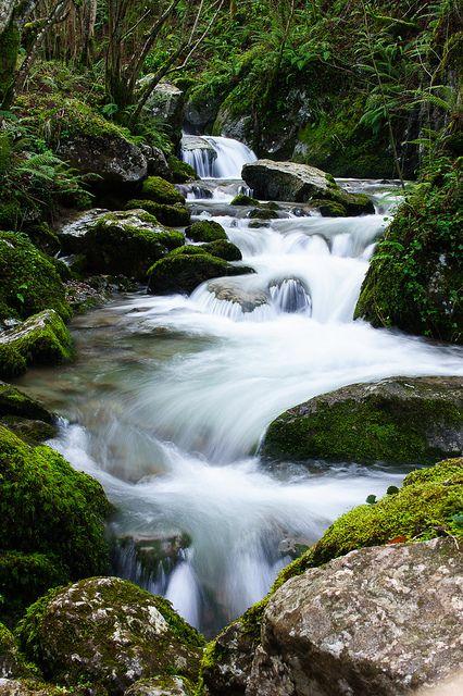 Asturias #paisajes #spain #caminosantiago #peregrinos