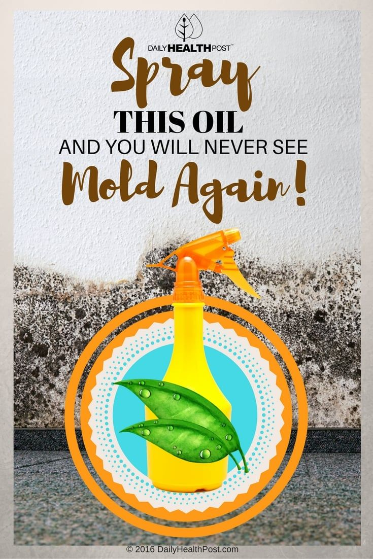 Spray-This-Oil-And-You-Will-Never-See-Mold-Again