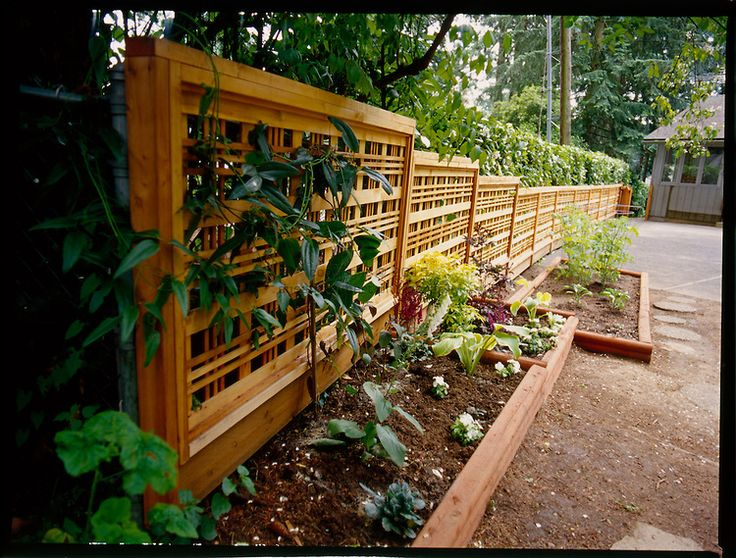 Decorative wooden fence in back yard editorial commercial for Decorative fence ideas