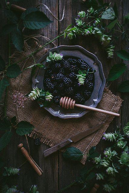 Oregano Honey Cake With Blackberry Buttercream + A Cookbook | by Eva Kosmas Flores
