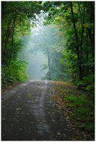 Solitary road by iisjah